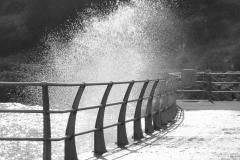 Spring Splash Newtons Cove - Larry Parks - 2nd