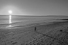 Out Walking The Dog - Steve Baker - HC